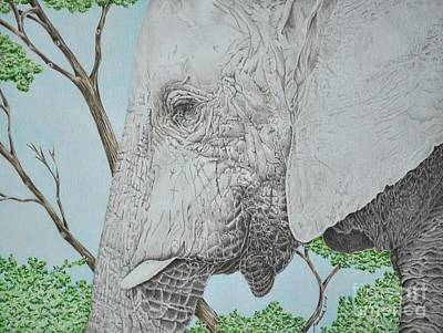 Elephant Pencil Drawing Drawing - Gentle Soul by Pandora Christy