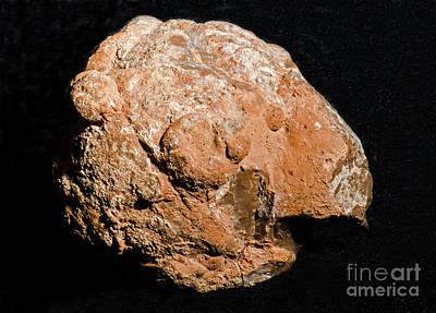 Inorganic Solid Photograph - Geode Unopened by Millard H. Sharp