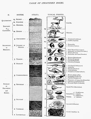 Triassic Photograph - Geology: Time Chart by Granger