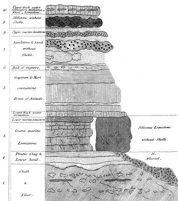 Info Graphic Photograph - Georges Cuvier, Stratigraphic Profile by British Library