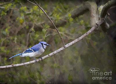 Painting - Georgia Bluejay In Spring by Cris Hayes
