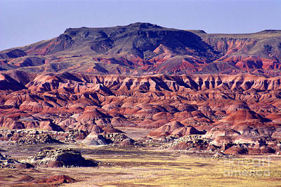 Georgia O'keefe Country - The Painted Desert Print by Douglas Taylor