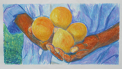 Food And Drink Drawing - Georgia Peach by Diana Davenport