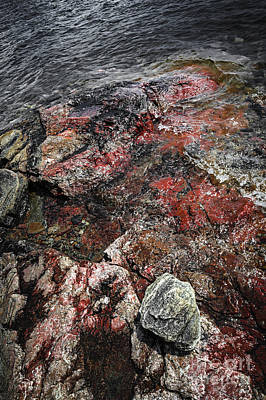 Georgian Bay Rocks Abstract IIi Print by Elena Elisseeva