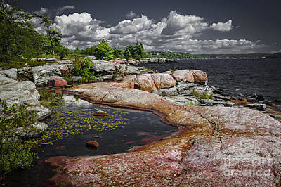 Georgian Bay Photograph - Georgian Bay Vii by Elena Elisseeva