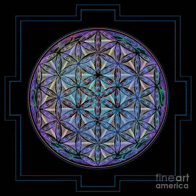 Prana Wall Art - Digital Art - Geoshroom by Beth Snow