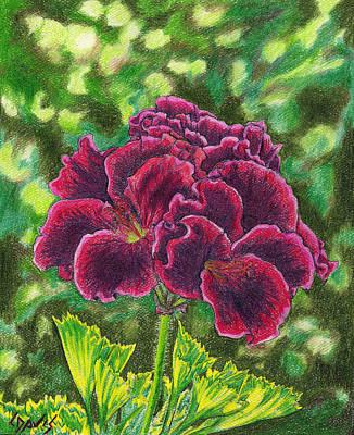 Geranium Royalty Art Print