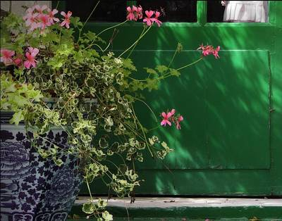 Outdoor Still Life Photograph - Geraniums And Green Door by Nikolyn McDonald