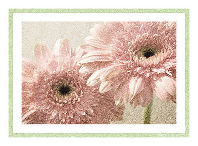 Gerbera Mixed Media - Gerber Daisy 3 by Andee Design