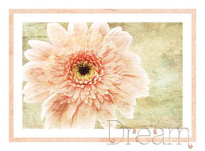 Photograph - Gerber Daisy Dream 1 by Andee Design