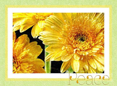 Photograph - Gerber Daisy Peace 6 by Andee Design