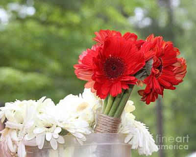Gerbera Daisy Photograph - Gerbera Bouquets by Cathy Lindsey
