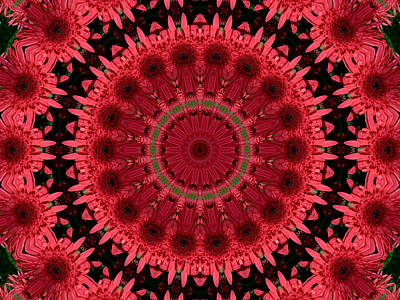 Photograph - Gerbera Mandala by MM Anderson