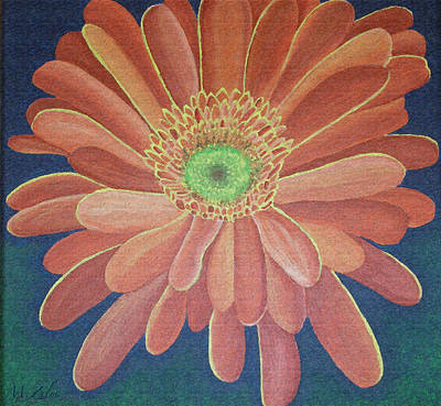 Gerbera Art Print by Megan Washington