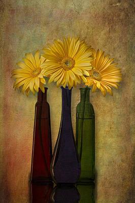 Gerbera Trio Art Print by Susan Candelario