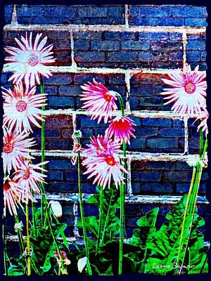 Photograph - Gerberas On A Wall by Leanne Seymour