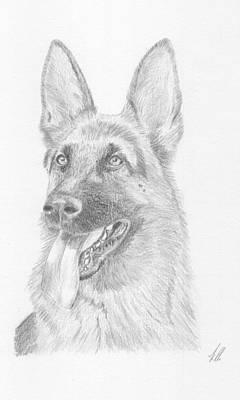 German Shepard Drawing - German Shepard Dog by Keith Miller