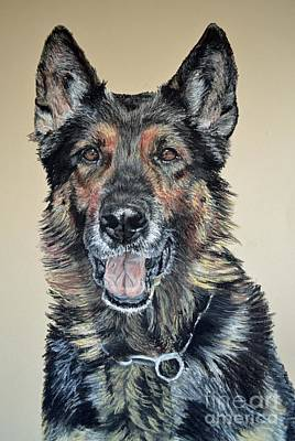 Dog Portrait Pastel - German Shepherd Jim by Ann Marie Chaffin