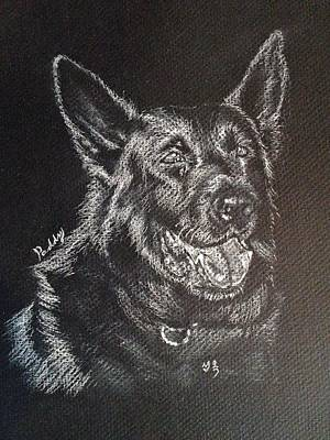 German Shepherd Mix Art Print by Sun Sohovich