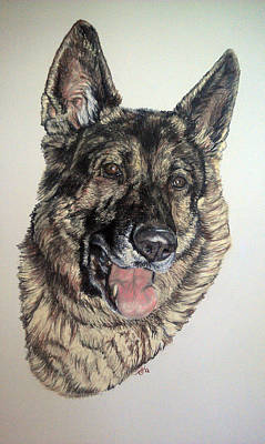 Pastel - German Shepherd Rudi by Ann Marie Chaffin