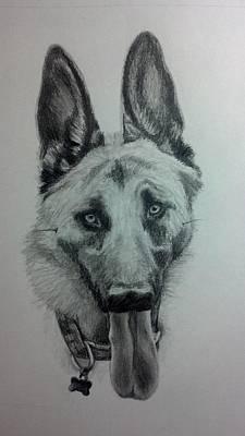 Drawing - German Shepherd Sketch by Michelle Harrington