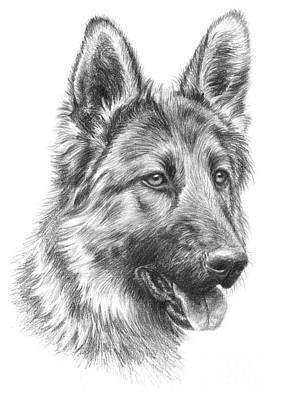 Dog Portrait Drawing - German Shepherd by Tobiasz Stefaniak
