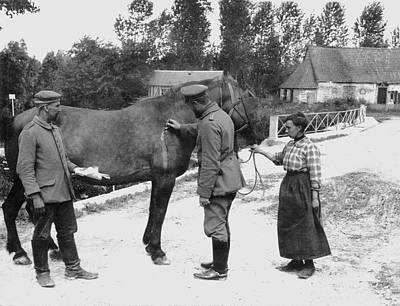 1910s Photograph - German Vet Treats French Horse by Underwood Archives