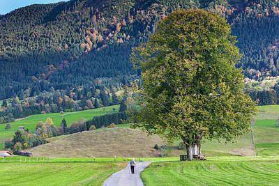 Bayern Photograph - Germany, Bavaria, Halblech, Alpine by Walter Bibikow
