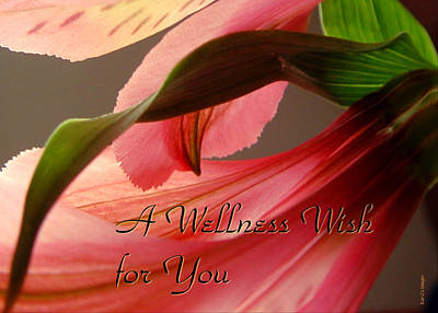 Get Well Flower Art Print by Kae Cheatham