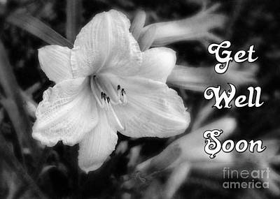 Digital Art - Get Well Lily by JH Designs
