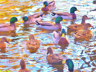 Photograph - Get Your Ducks In A Row by Marilyn Diaz