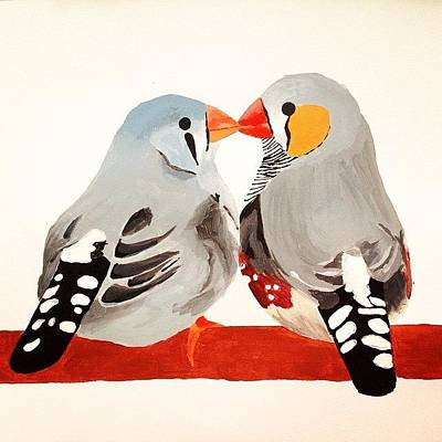 Finch Photograph - Lovebirds by Sinead Connell