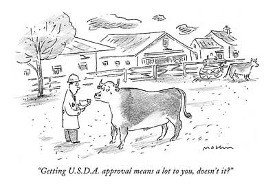 Domestic Animals Drawing - Getting U.s.d.a. Approval Means A Lot by Michael Maslin
