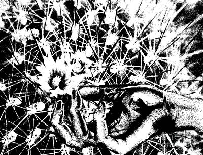 Drawing - Daisies by Belinda Threeths