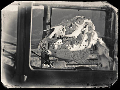 Art Print featuring the photograph Ghost Car Of Equine Death by David Bailey