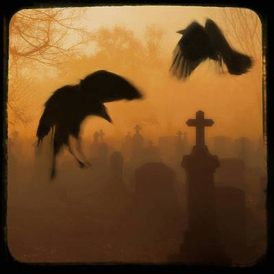 Birds In Graveyard Photograph - Ghost Crows 2 by Gothicrow Images