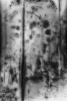Ghost Forest Art Print by Charles Garrett