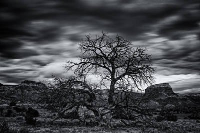 Ghost Ranch Abiquiu New Mexico Georgia On My Mind Print by Silvio Ligutti