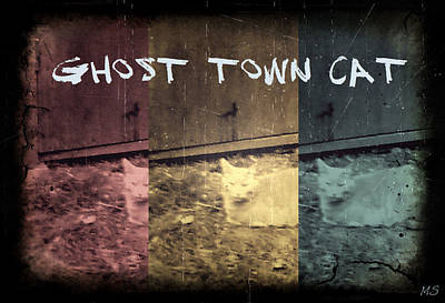 Art Print featuring the photograph Ghost Town Cat by Absinthe Art By Michelle LeAnn Scott