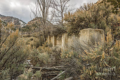 Photograph - Ghost Town Foundation by Sue Smith