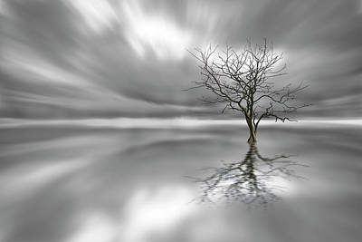 Bw Photograph - Ghost Tree by Leif L?ndal