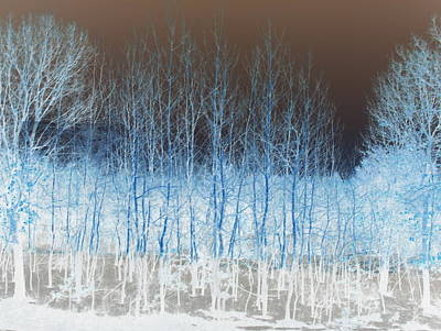 Photograph - Ghost Trees by A K Dayton