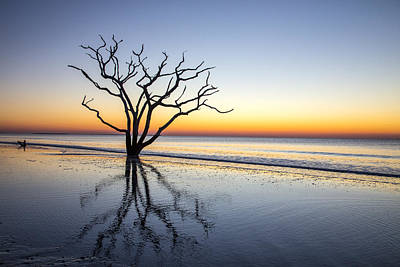 Photograph - Ghost Trees Of Boneyard Beach 07 by Jim Dollar