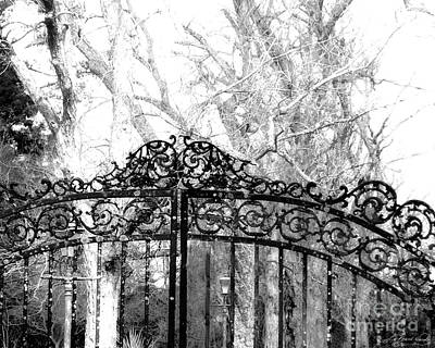 Photograph - Ghosted Gateway by Lizi Beard-Ward