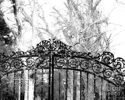 Photograph - Ghosted Gateway by Lizi Beard-Ward