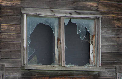 Photograph - Ghostly Windows by Ron Roberts