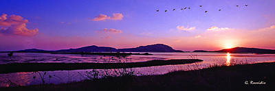 Ancient Photograph - Gialova Wetland by George Rossidis