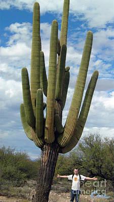 Giant Ancient Saguaro Case 2011 03 San Manuel Arizona Print by Feile Case