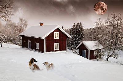 Borzoi Photograph - Giant Dogs Playing Under A Full Moon by Christian Lagereek