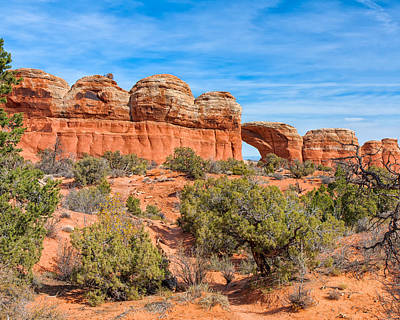 Photograph - Giant Pots by John M Bailey